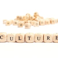 "Volunteer Manager ""Culture"""